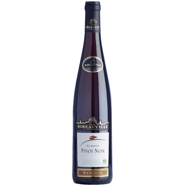 Pinot noir bio Alsace