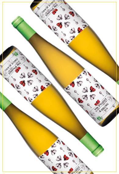 Vins et crémants d'Alsace -Nouveautés Vins bio d'Alsace - Cave de Ribeauvillé
