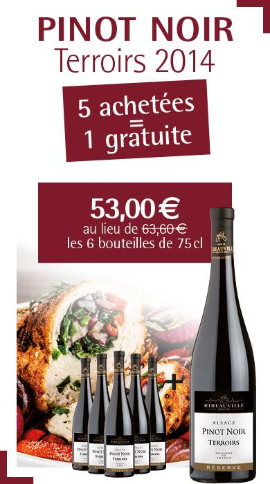 Offre Pinot Noir Terroirs 5+1