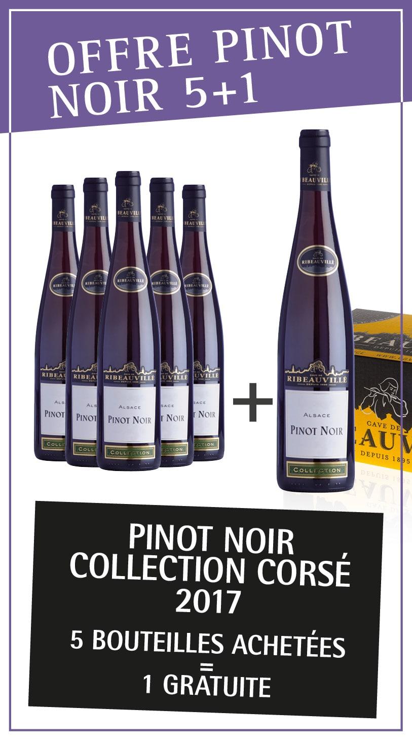Vins Bios d'Alsace